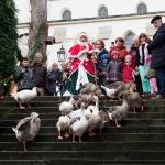 Gänseparade auf dem Weihnachtsmarkt