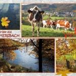 Blick nach Reininghausen - Aggertalsperre
