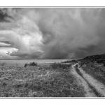 Blick von 'Klein Afrika' - Morsum-Kliff Richtung Festland